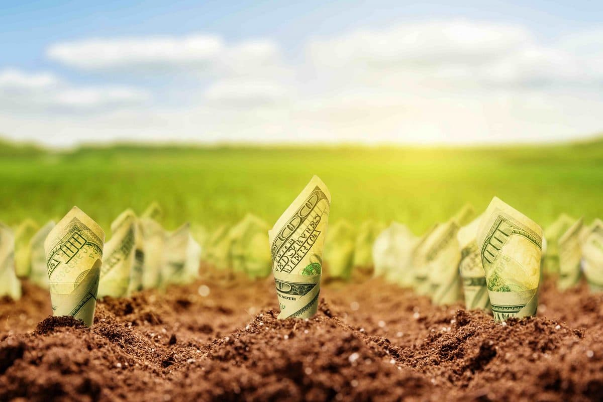 Создаем стабильные источники пассивного дохода