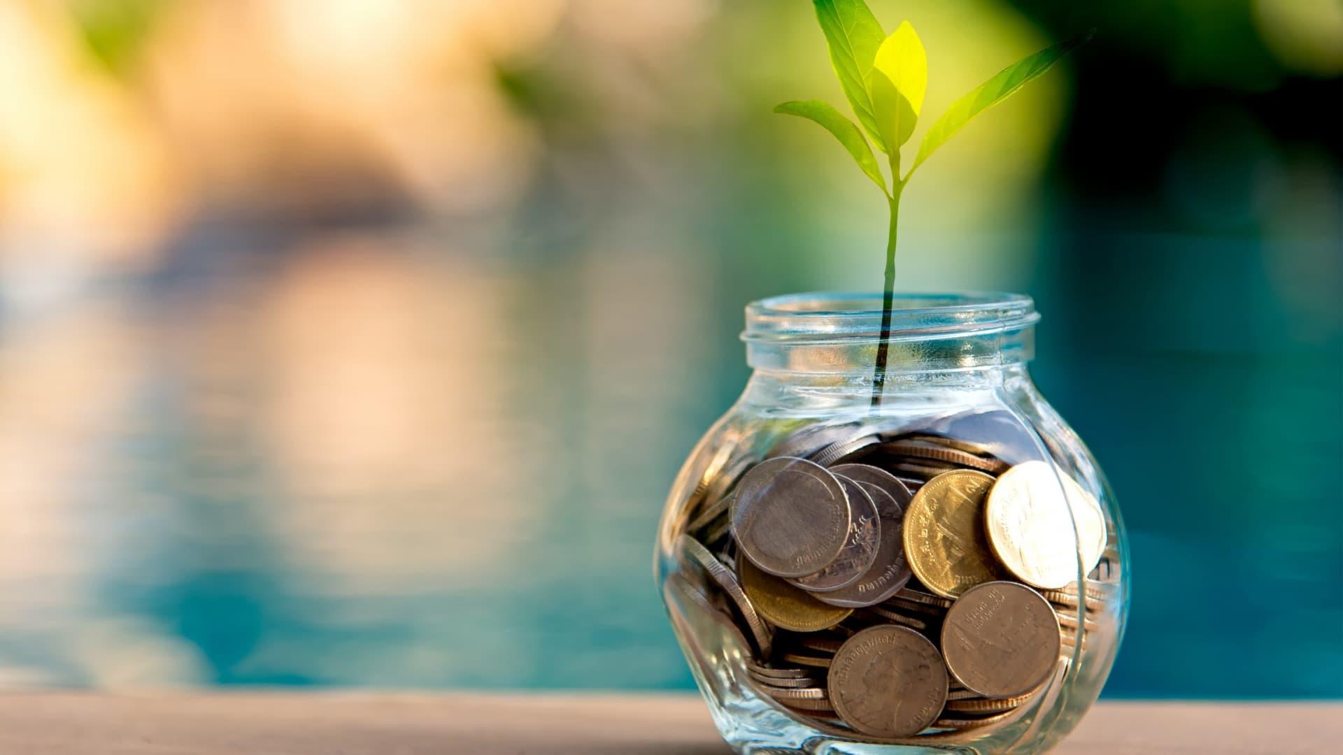 Как научиться грамотно инвестировать