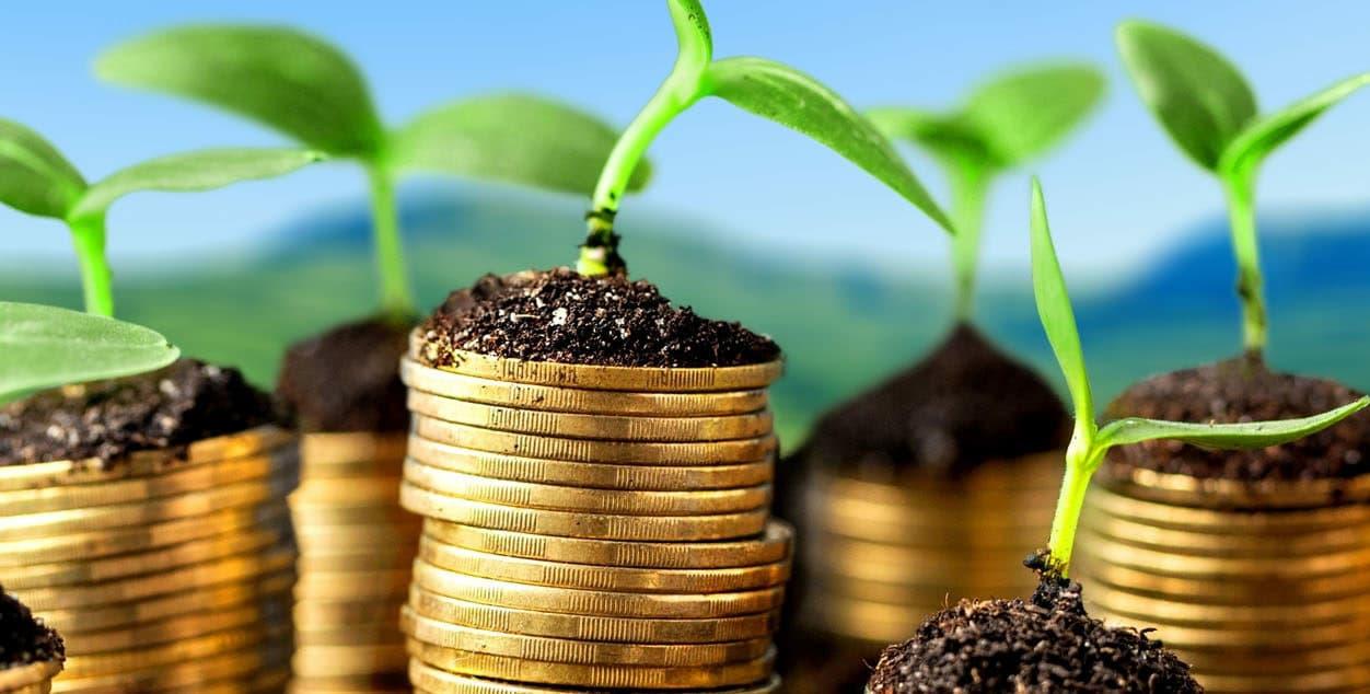 Как выбирать инвестиционные компании