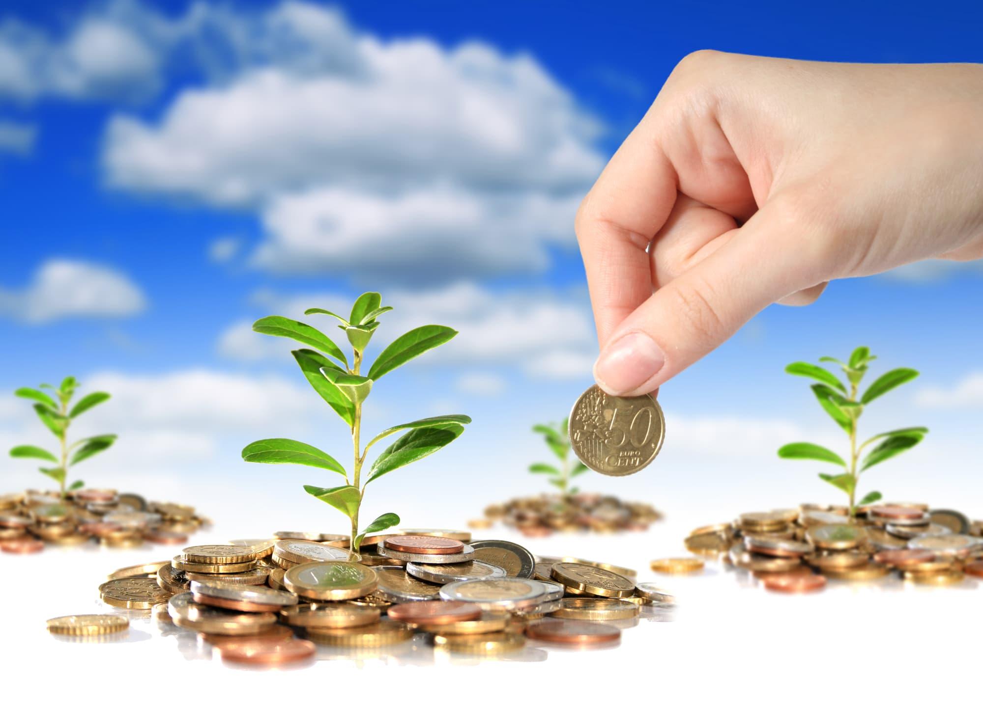 Оценка инвестиционной привлекательност икомпании