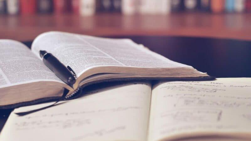 Как выбирать курсы обучения бизнесу