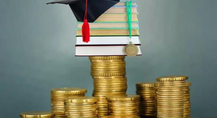 Обзор крупнейшего образовательного курса Академии Частного Инвестора